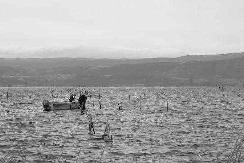 Sul lago di Varano - Puglia 2013
