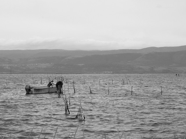 PUGLIA - Sul lago di Varano