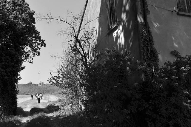"""""""Questa è stata denominata la """"pianurizzazione"""" della lotta partigiana e fu una caratteristica tipica della Romagna. Bisogna ricordare però che tutto ciò fu possibile in quanto tutta la popolazione era nemica dei tedeschi. C'erano famiglie contadine che nascondevano intere squadre partigiane nelle loro case, altre non lo facevano, ma comunque mai ci furono denunce, mai nessuno tradì il vicino di casa o di podere. Il popolo era solidale con i partigiani contro i tedeschi e i fascisti"""" Olga Prati"""